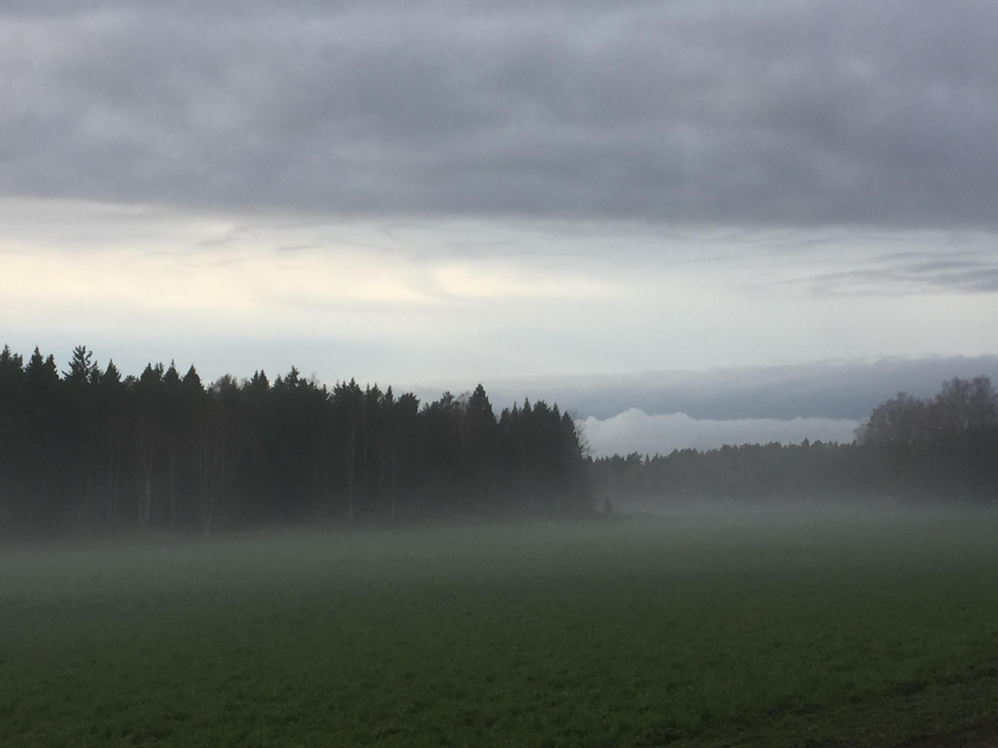 trning - Nr dagen vaknar - unam.net